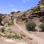 Short climb on Sovereign trail